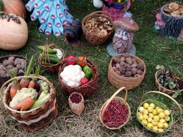 Разнообразие урожая праздника Уртун тойы