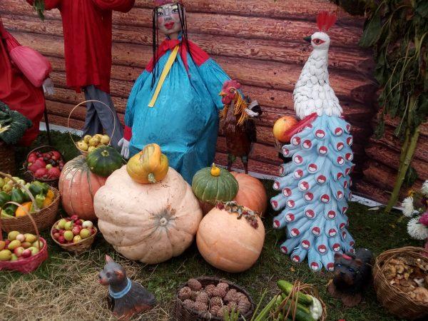 Выставка-конкурс плодов и овощей
